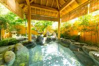 【一泊朝食付・一人旅自由行】8畳和室・下呂温泉で自由行動一人旅♪