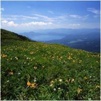 【夏休みのお泊り旅行!】澄んだ空気の高原で満天の星空鑑賞♪夏の涼やか和風創作会席でおもてなし