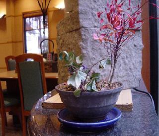 【平日限定】現金特価【ビジネス・鳥取駅から徒歩5分で移動楽々】レストランで旅館の和朝食をお気軽に