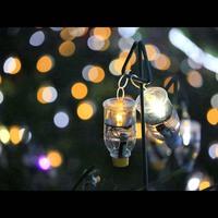 絶景イルミネーション〜「水仙岬のかがやき2018」〜越前岬に電飾の花が咲く☆幻想的な光の中へ♪