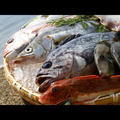 ≪春得★おすすめプラン≫リーズナブルに!絶景展望温泉と鮮魚満載おまかせ料理を満喫☆+゜