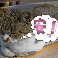 【期間限定】1室5名利用でお1人様5,670円〜!!素泊まりプランで気軽に温泉を満喫♪