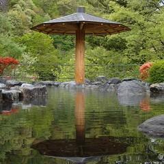 【湯治プラン】源泉掛け流し温泉でのんびり湯ったり。猿ヶ京温泉を楽しむ