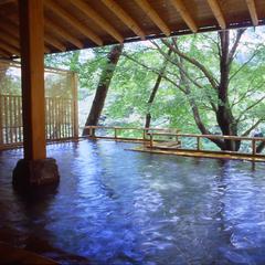 愛知県新城市能登瀬上谷平4-1 湯谷温泉 湯の風 HAZU -02