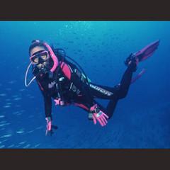 【至極の体験】海の神秘☆ふらっと気軽にダイビング体験プラン[1泊2食付]※現金特価※