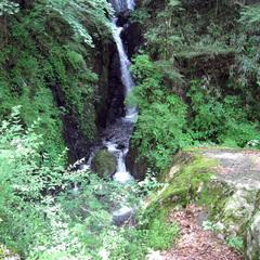 【2・3連泊割】開湯約1500年!悠久の名湯でゆったり温泉三昧