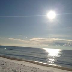 【おひとり様歓迎】海側シングルプラン・朝食付