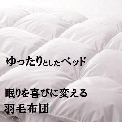 八尾ターミナルホテル北館(旧 新館) image