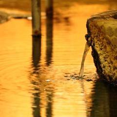 【カップルにオススメ】檜の貸切風呂無料♪渋温泉散策に便利な素泊まりプラン《冬・雪》