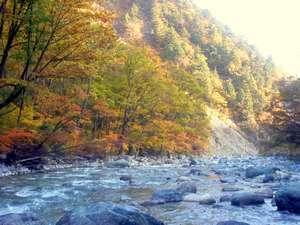 五竜岳・唐松岳・白馬岳、登山口まで無料送迎プラン