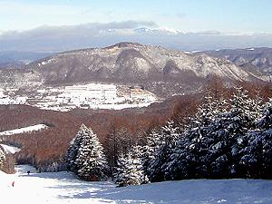 Татесина - Pension Akai Yane(Nagano)