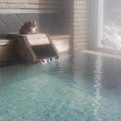 【素泊り】24時までチェックインOK!源泉かけ流しの温泉とサウナでぽかぽか♪ ≪食事なし≫