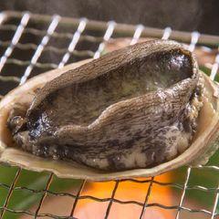 《期間限定》伊勢海老・あわび・金目鯛の三大プラン ◆自家源泉の貸切風呂と房総の美味で癒しの1日を♪