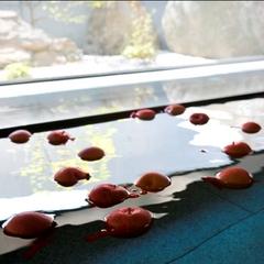 【アスレチック付】<ムササビ☆ファミリーコース>季節の食材と湯巡りも! (240)