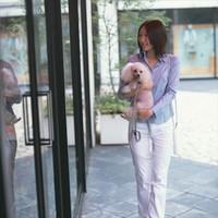 【1番人気】ペットと一緒に旅行へ♪かわいい家族と素敵な思い出を☆ペットアメニティも充実で安心!