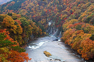 尾瀬と片品村周辺の紅葉とりんご狩りと温泉を楽しむ、只今尾瀬国立公園10周年記念宿泊キャンペーン中