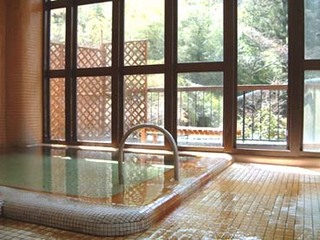 源泉掛流し 混浴渓流野天湯・貸切風呂で湯ったり湯っくりプラン