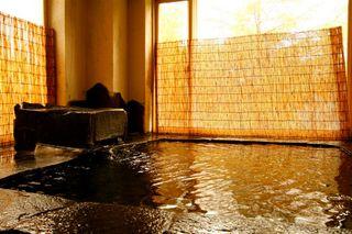 【お先でスノ。】カモシカの来る宿♪木の香プラン☆3室限定ログルーム山岳ホテル満喫【温泉】【ペット可】