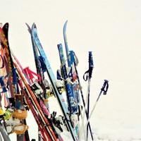 スキーシーズン限定プラン★野沢の恵みを贅沢に味わう至福のディナーに舌鼓【1泊2食】