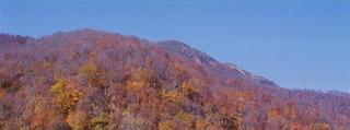 【春得】安曇野の平日の早朝、朝日を浴びた雄大な北アルプスを望む早起きは三文の得プラン!