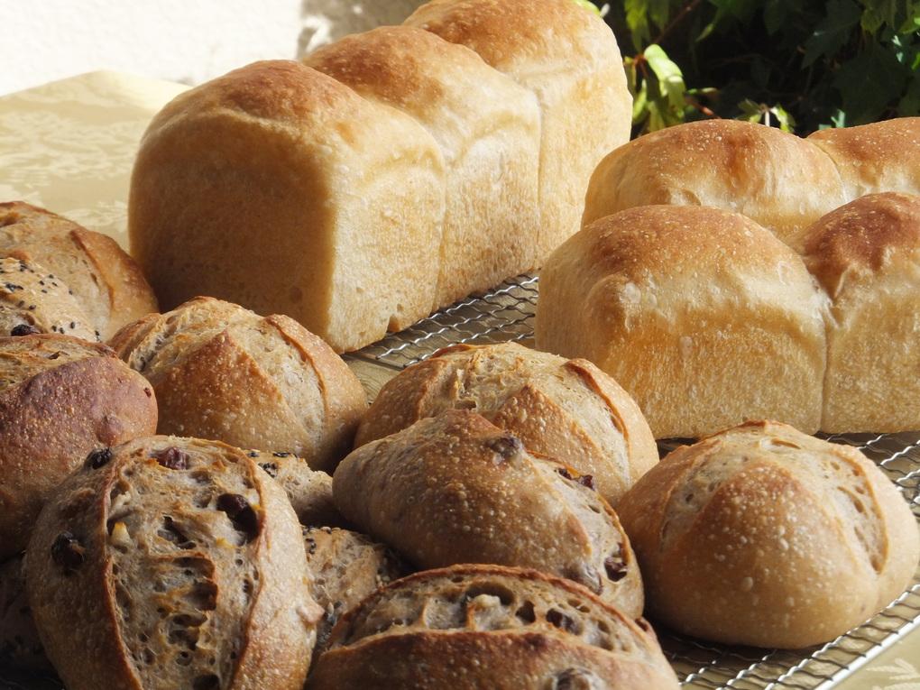 自家製天然酵母パンの宿 栂池高原 プチホテルシャンツェ 関連画像 3枚目 楽天トラベル提供