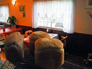 キャベツ畑のパン&デザート工房 シューレビュー