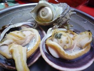 ☆海女さんが祝う【鳥羽♪祝い魚プラン】伊勢海老、鮑、鯛を味わう