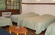 洋室4ベッド【禁煙】 シモンズベッド4台+ソファーベッド