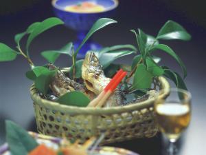 【春夏旅セール】送迎無料【2食付】春休み・GWはカップル・夫婦旅★会席料理&朝は温泉がゆ★貸切風呂有