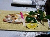 【朝獲れの旬魚を地酒とともに】<獲れたて鮮魚が自慢>四季折々の美味しさを感じてください。