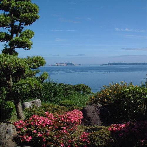 名田忠山荘 関連画像 4枚目 楽天トラベル提供