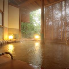 【平日限定・17:00チェックイン】〜1泊朝食〜 お忙しいあなたの秘密の温泉旅行
