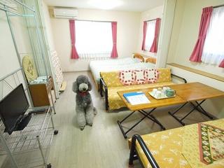 無線LAN利用可。キッチン、バス、温水洗浄トイレ付。洋室