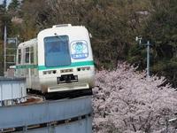 【乗り放題!】新交通システム「こあら号」一日乗車券付プラン【素泊まり】