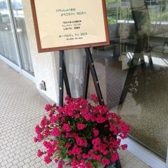 「楽天限定」【南海フェリー(和歌山⇔徳島)タイアッププラン】素泊りで南紀探訪の旅。