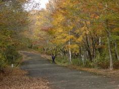 秋のいい空気いっぱいの羽鳥で遊ぼう・Gotoと地域共通ク−ポン使って会津観光は車35〜55分