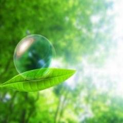 地球環境にやさしい&お得にステイ 連泊Ecoプラン【素泊り】