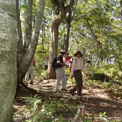 戸狩トレイル★初心者安心!3つのコースで里山の大自然と文化に触れる!<2食付>