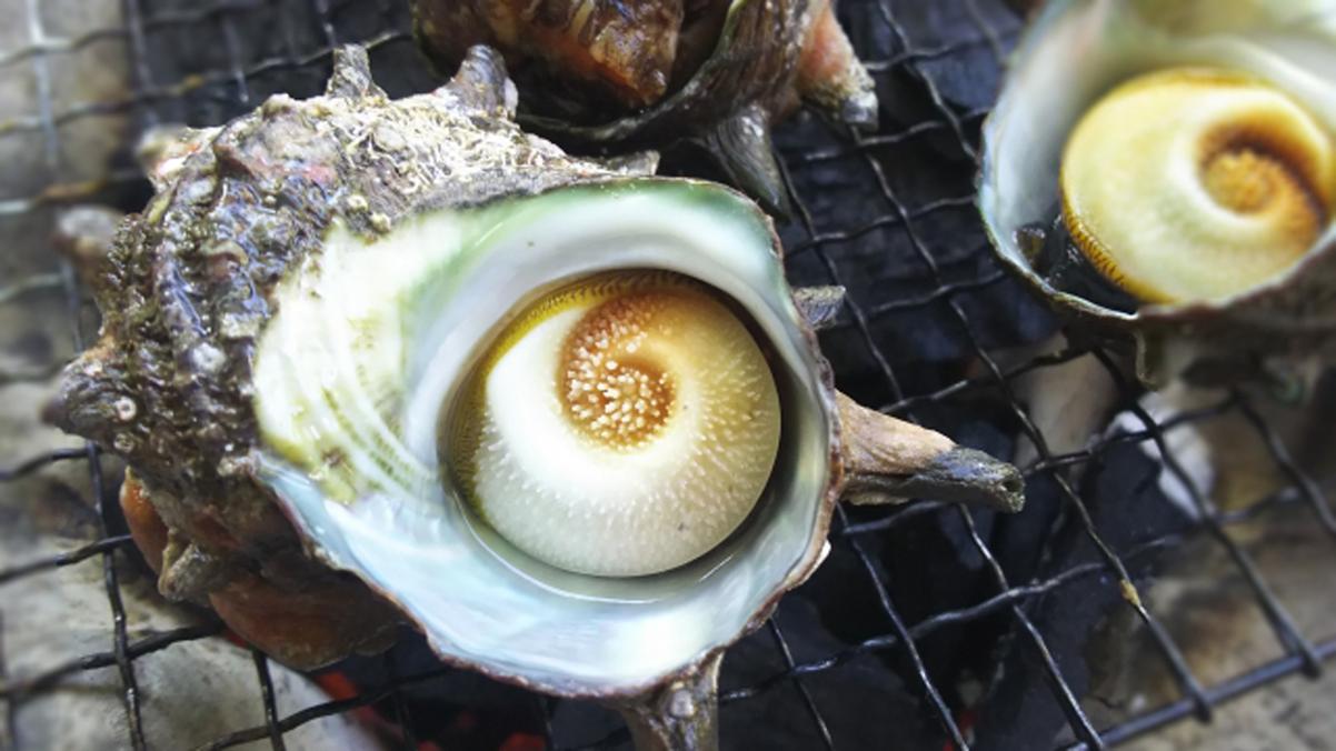 【絶品活きサザエ一品付】壺焼き・お造りどちらかセレクト♪愛媛のご馳走食べ放題の和洋ビュッフェに舌鼓!