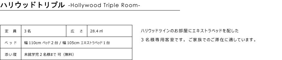 トリプルルーム28.4㎡12階-13階南側