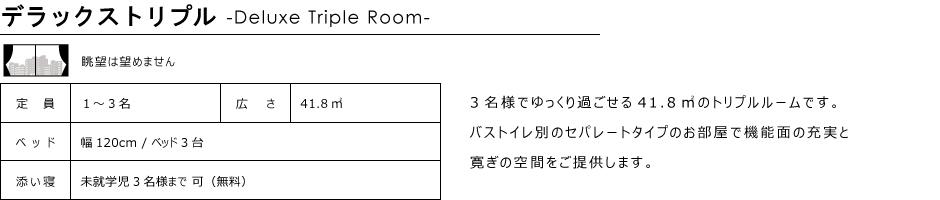 トリプルルーム41.8㎡11階-12階北側