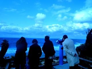女子旅〜お友達で行く沖永良部島の旅満喫プラン<朝食付き>