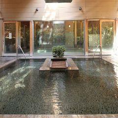 【素泊まり★ポイント2倍】美肌効果が自慢の源泉かけ流し温泉を満喫♪庭園も楽しめます★