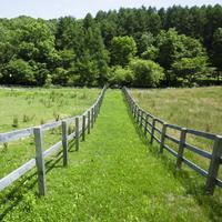 【癒し時間】バルコニーから草原を眺めながらお部屋でのんびり♪思い思いのひと時を「ロングステイプラン」