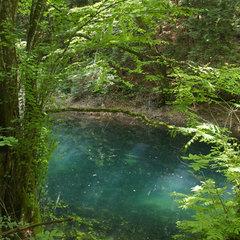 深緑の十二湖へ行こう!1泊2食+路線バス往復チケット付きプラン