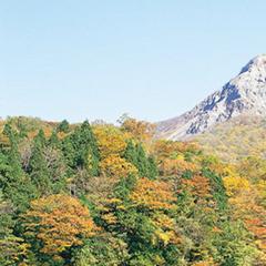 十二湖白神トレッキング!「お手軽散策コース」
