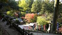 【4月ー11月限定】清水寺の展望台でホッとひと息★自然体で愉しもう♪≪野点セットレンタル≫