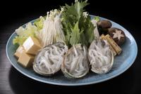 【花見・ネモフィラ見学に】北茨城はあんこうだけじゃない!春の名物白魚つくし鍋スタンダードプラン!