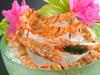 【春得】活桜エビ&香住かに刺付!香住かにフルコース+のどぐろ塩焼き【女性も嬉しい♪3大無料特典付き】
