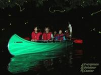 【体験】夜の湖☆星空蛍ウォッチング ツアー